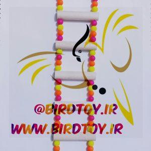 نردبان پرنده طوطی عروس هلندی